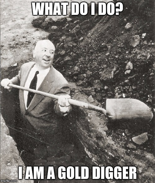 Hitchcock Digging Grave | WHAT DO I DO? I AM A GOLD DIGGER | image tagged in hitchcock digging grave | made w/ Imgflip meme maker