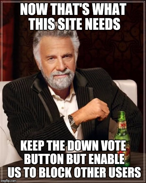 The Most Interesting Man In The World Meme | NOW THAT'S WHAT THIS SITE NEEDS KEEP THE DOWN VOTE BUTTON BUT ENABLE US TO BLOCK OTHER USERS | image tagged in memes,the most interesting man in the world | made w/ Imgflip meme maker