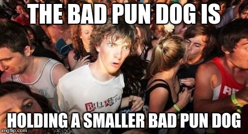 Sudden Clarity Clarence Meme | THE BAD PUN DOG IS HOLDING A SMALLER BAD PUN DOG | image tagged in memes,sudden clarity clarence | made w/ Imgflip meme maker