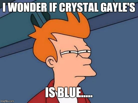 Futurama Fry Meme | I WONDER IF CRYSTAL GAYLE'S IS BLUE..... | image tagged in memes,futurama fry | made w/ Imgflip meme maker
