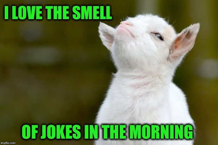 I LOVE THE SMELL OF JOKES IN THE MORNING | made w/ Imgflip meme maker