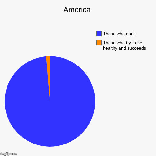 America | Those who try to be healthy and succeeds, Those who don't | image tagged in funny,pie charts | made w/ Imgflip pie chart maker