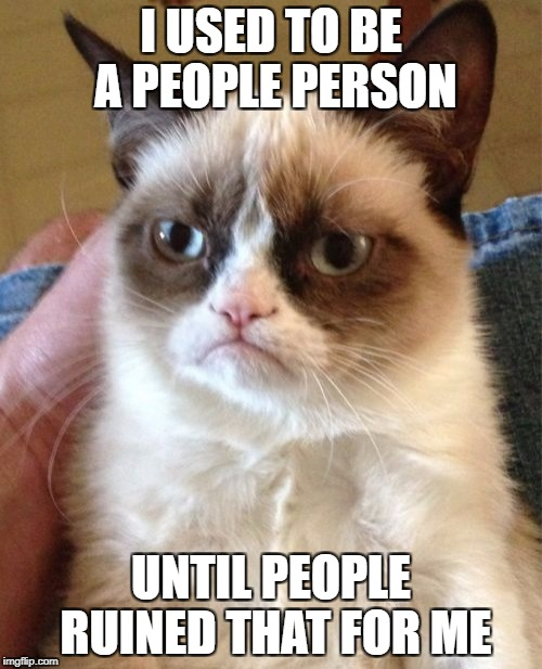 Grumpy Cat Meme | I USED TO BE A PEOPLE PERSON UNTIL PEOPLE RUINED THAT FOR ME | image tagged in memes,grumpy cat,funny,people,i used to be,so true | made w/ Imgflip meme maker