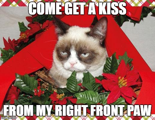 Under the mistletoe... | COME GET A KISS FROM MY RIGHT FRONT PAW | image tagged in memes,grumpy cat mistletoe,grumpy cat | made w/ Imgflip meme maker