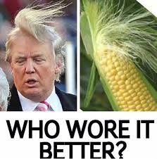 Donald corn | image tagged in corn,meme,donald trump | made w/ Imgflip meme maker