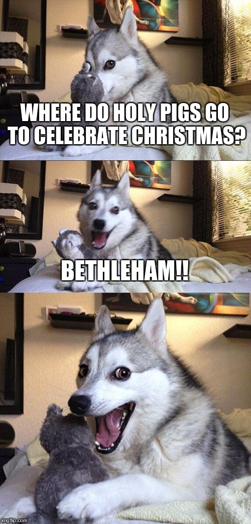 Christmas Pun Dog | WHERE DO HOLY PIGS GO TO CELEBRATE CHRISTMAS? BETHLEHAM!! | image tagged in memes,bad pun dog,funny,punny,christmas,pigs | made w/ Imgflip meme maker