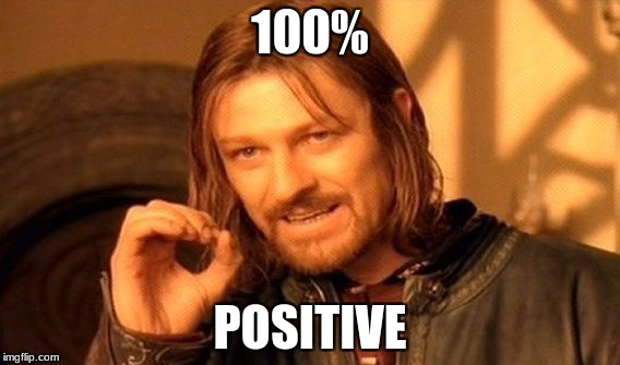 One Does Not Simply Meme | 100% POSITIVE | image tagged in memes,one does not simply | made w/ Imgflip meme maker