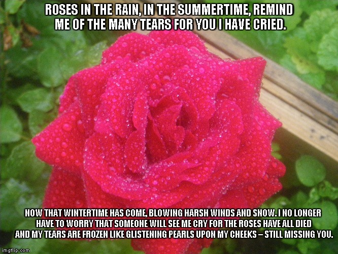 Frozen Teardrops | ROSES IN THE RAIN, IN THE SUMMERTIME, REMIND ME OF THE MANY TEARS FOR YOU I HAVE CRIED. NOW THAT WINTERTIME HAS COME, BLOWING HARSH WINDS AN | image tagged in roses,rain,summertime,wintertime,snow | made w/ Imgflip meme maker