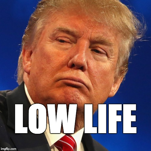 Image result for trump is a low life
