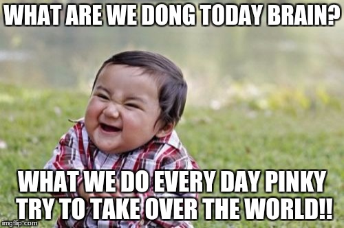 Evil Toddler Meme | WHAT ARE WE DONG TODAY BRAIN? WHAT WE DO EVERY DAY PINKY TRY TO TAKE OVER THE WORLD!! | image tagged in memes,evil toddler | made w/ Imgflip meme maker