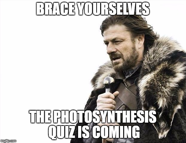 Brace Yourselves X is Coming Meme | BRACE YOURSELVES THE PHOTOSYNTHESIS QUIZ IS COMING | image tagged in memes,brace yourselves x is coming | made w/ Imgflip meme maker