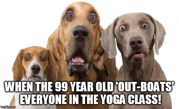 shocked dogs | WHEN THE 99 YEAR OLD 'OUT-BOATS' EVERYONE IN THE YOGA CLASS! | image tagged in shocked dogs | made w/ Imgflip meme maker