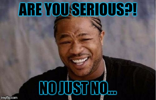 Yo Dawg Heard You Meme | ARE YOU SERIOUS?! NO JUST NO... | image tagged in memes,yo dawg heard you | made w/ Imgflip meme maker