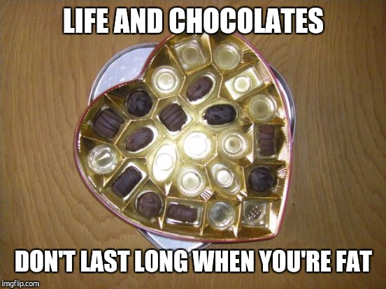 LIFE AND CHOCOLATES DON'T LAST LONG WHEN YOU'RE FAT | made w/ Imgflip meme maker