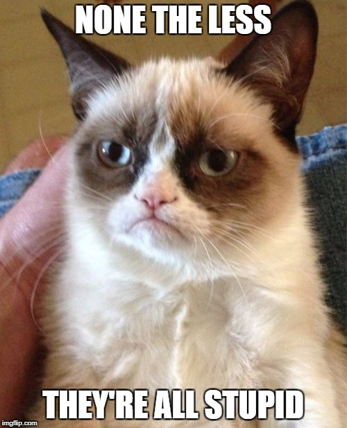 Grumpy Cat Meme | NONE THE LESS THEY'RE ALL STUPID | image tagged in memes,grumpy cat | made w/ Imgflip meme maker