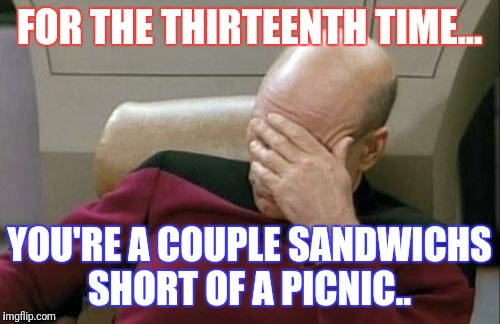 Captain Picard Facepalm Meme | FOR THE THIRTEENTH TIME... YOU'RE A COUPLE SANDWICHS SHORT OF A PICNIC.. | image tagged in memes,captain picard facepalm | made w/ Imgflip meme maker