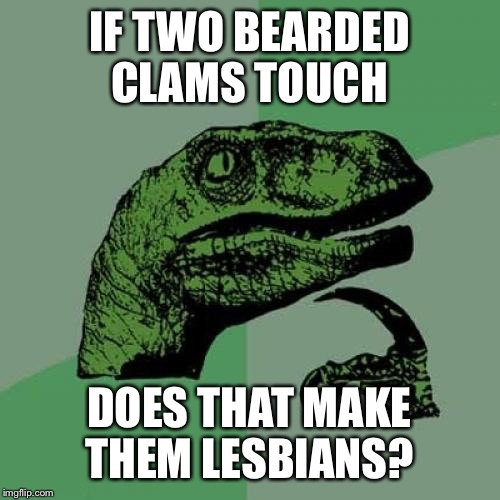 Philosoraptor Meme | IF TWO BEARDED CLAMS TOUCH DOES THAT MAKE THEM LESBIANS? | image tagged in memes,philosoraptor | made w/ Imgflip meme maker