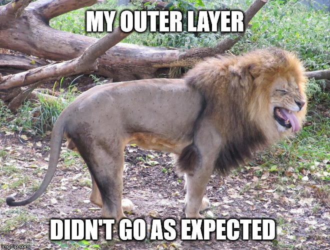 MY OUTER LAYER DIDN'T GO AS EXPECTED | made w/ Imgflip meme maker