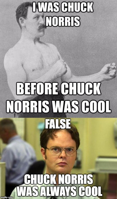 FALSE CHUCK NORRIS WAS ALWAYS COOL | image tagged in chuck norris | made w/ Imgflip meme maker