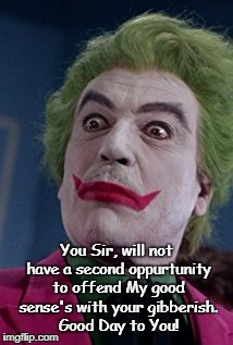 You Sir, will not have a second oppurtunity to offend My good sense's with your gibberish. Good Day to You! | image tagged in joker is not amused | made w/ Imgflip meme maker
