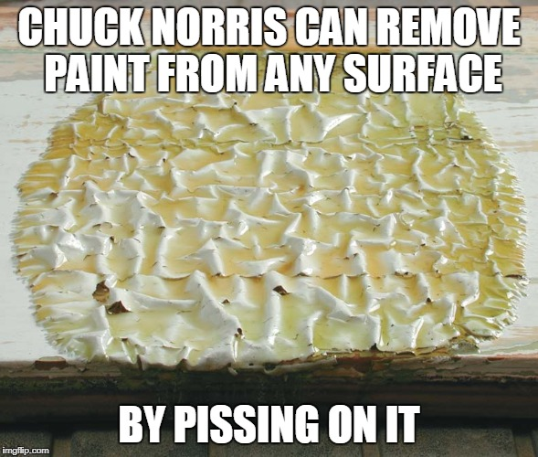 Chuck Norris paint remover | CHUCK NORRIS CAN REMOVE PAINT FROM ANY SURFACE BY PISSING ON IT | image tagged in chuck norris,memes,paint remover | made w/ Imgflip meme maker
