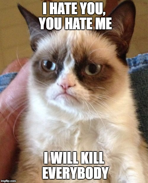 Grumpy Cat Meme | I HATE YOU, YOU HATE ME I WILL KILL EVERYBODY | image tagged in memes,grumpy cat | made w/ Imgflip meme maker