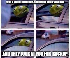 Ain't dealing with that | WHEN YOUR FRIEND IN A AGRUMENT WITH SOMEONE AND THEY LOOK AT YOU FOR  BACKUP | image tagged in kermit rolls up window | made w/ Imgflip meme maker