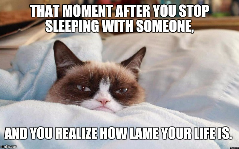 THAT MOMENT AFTER YOU STOP SLEEPING WITH SOMEONE, AND YOU REALIZE HOW LAME YOUR LIFE IS. | image tagged in grumpy cat bed | made w/ Imgflip meme maker