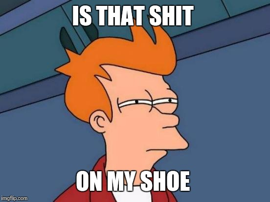 Happens to everyone  | IS THAT SHIT ON MY SHOE | image tagged in memes,futurama fry | made w/ Imgflip meme maker