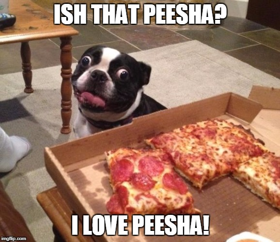 nom nom nom | ISH THAT PEESHA? I LOVE PEESHA! | image tagged in memes,dog | made w/ Imgflip meme maker