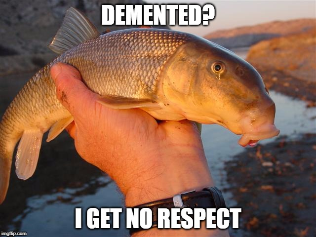 DEMENTED? I GET NO RESPECT | made w/ Imgflip meme maker