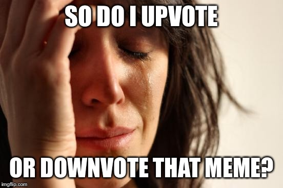 First World Problems Meme | SO DO I UPVOTE OR DOWNVOTE THAT MEME? | image tagged in memes,first world problems | made w/ Imgflip meme maker