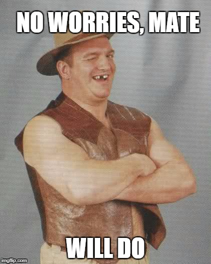 NO WORRIES, MATE WILL DO | made w/ Imgflip meme maker
