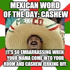 Mexican Fiesta | MEXICAN WORD OF THE DAY: CASHEW IT'S SO EMBARRASSING WHEN YOUR MAMA COME INTO YOUR ROOM AND CASHEW JERKING OFF. | image tagged in mexican fiesta | made w/ Imgflip meme maker