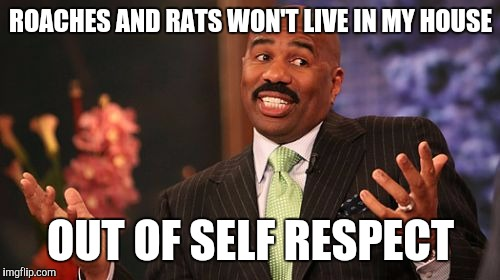 Steve Harvey Meme | ROACHES AND RATS WON'T LIVE IN MY HOUSE OUT OF SELF RESPECT | image tagged in memes,steve harvey | made w/ Imgflip meme maker
