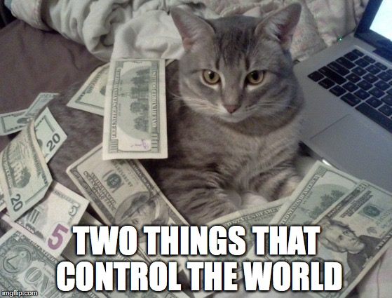 The Duopoly Of Power | TWO THINGS THAT CONTROL THE WORLD | image tagged in cat money,power | made w/ Imgflip meme maker