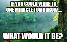 Nature | IF YOU COULD WAKE TO ONE MIRACLE TOMORROW.... WHAT WOULD IT BE? | image tagged in nature | made w/ Imgflip meme maker