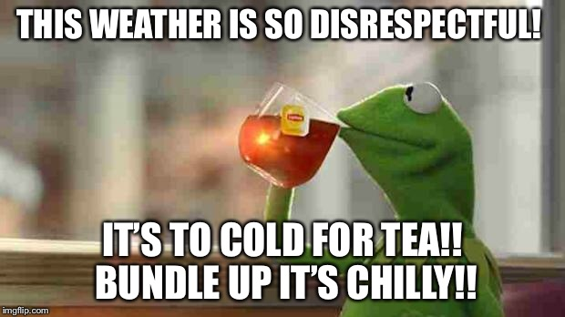Kermit sipping tea | THIS WEATHER IS SO DISRESPECTFUL! IT'S TO COLD FOR TEA!! BUNDLE UP IT'S CHILLY!! | image tagged in kermit sipping tea | made w/ Imgflip meme maker