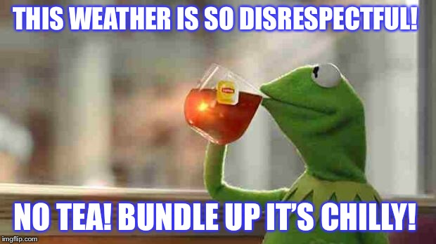 Kermit sipping tea | THIS WEATHER IS SO DISRESPECTFUL! NO TEA! BUNDLE UP IT'S CHILLY! | image tagged in kermit sipping tea | made w/ Imgflip meme maker