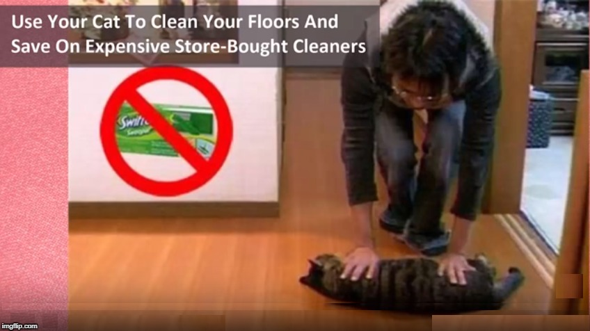 much better | image tagged in memes,funny,cat,swiffer,lmao,lmfao | made w/ Imgflip meme maker