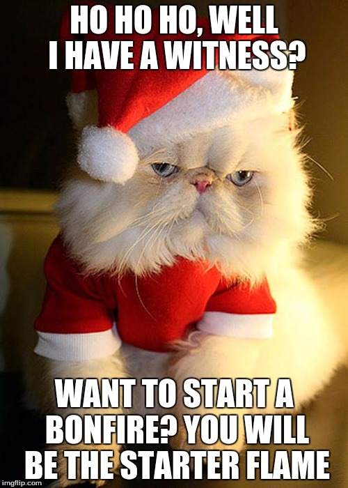 Santa Grumpy Cat | HO HO HO, WELL I HAVE A WITNESS? WANT TO START A BONFIRE? YOU WILL BE THE STARTER FLAME | image tagged in santa grumpy cat | made w/ Imgflip meme maker
