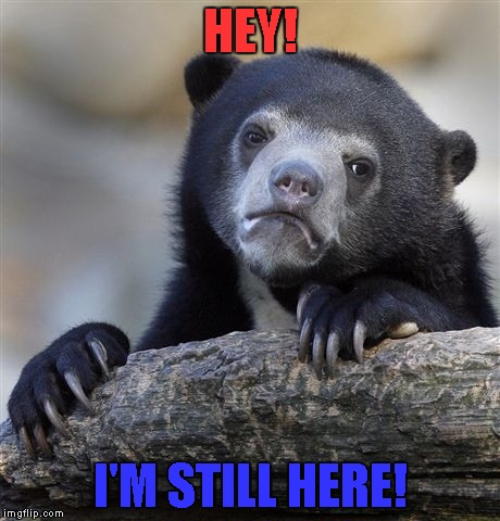 Confession Bear Meme | HEY! I'M STILL HERE! | image tagged in memes,confession bear | made w/ Imgflip meme maker