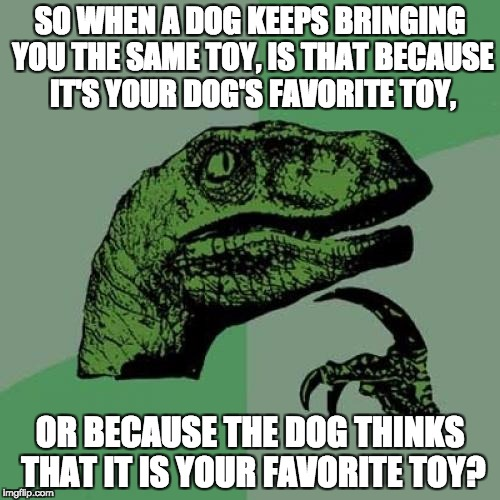 Philosoraptor Meme | SO WHEN A DOG KEEPS BRINGING YOU THE SAME TOY, IS THAT BECAUSE IT'S YOUR DOG'S FAVORITE TOY, OR BECAUSE THE DOG THINKS THAT IT IS YOUR FAVOR | image tagged in memes,philosoraptor | made w/ Imgflip meme maker