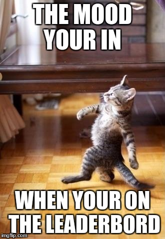 Cool Cat Stroll Meme | THE MOOD YOUR IN WHEN YOUR ON THE LEADERBORD | image tagged in memes,cool cat stroll | made w/ Imgflip meme maker