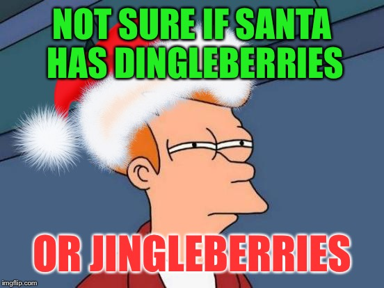 Christmas Fry | NOT SURE IF SANTA HAS DINGLEBERRIES OR JINGLEBERRIES | image tagged in futurama fry | made w/ Imgflip meme maker