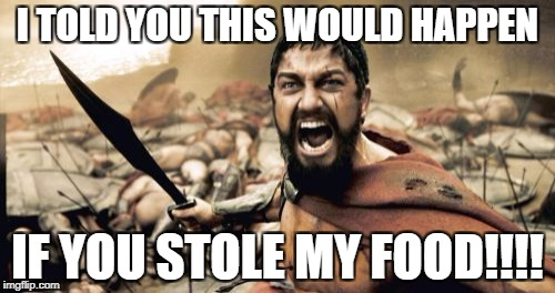 Sparta Leonidas Meme | I TOLD YOU THIS WOULD HAPPEN IF YOU STOLE MY FOOD!!!! | image tagged in memes,sparta leonidas | made w/ Imgflip meme maker