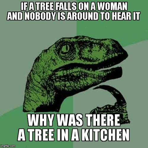 Philosoraptor Meme | IF A TREE FALLS ON A WOMAN AND NOBODY IS AROUND TO HEAR IT WHY WAS THERE A TREE IN A KITCHEN | image tagged in memes,philosoraptor,sexist,tree,thinking | made w/ Imgflip meme maker
