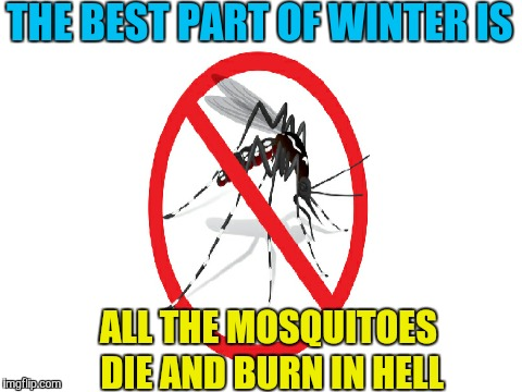 Yay! No more mosquito bites | THE BEST PART OF WINTER IS ALL THE MOSQUITOES DIE AND BURN IN HELL | image tagged in memes,mosquitoes,winter,the best part of | made w/ Imgflip meme maker