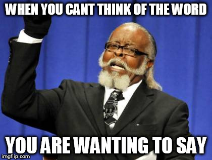 Too Damn High Meme | WHEN YOU CANT THINK OF THE WORD YOU ARE WANTING TO SAY | image tagged in memes,too damn high | made w/ Imgflip meme maker