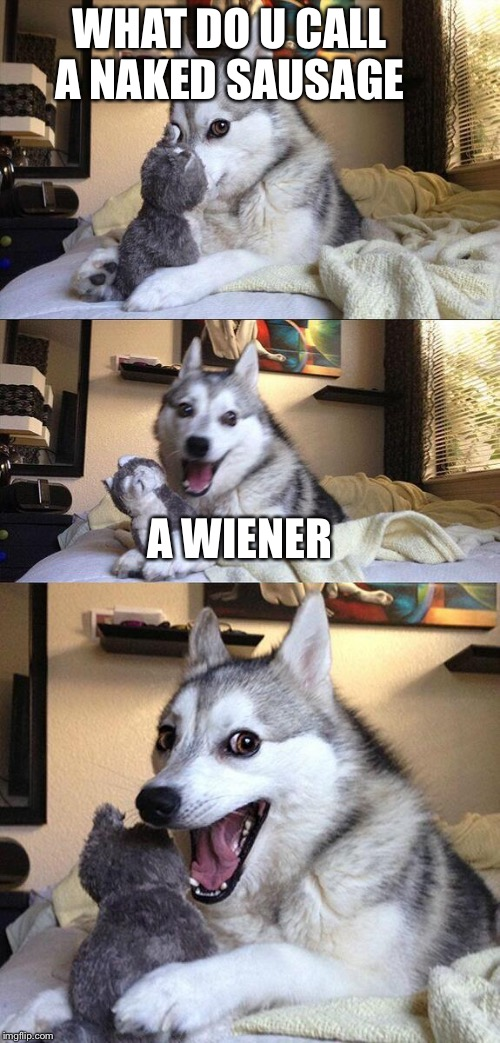 Bad Pun Dog Meme | WHAT DO U CALL A NAKED SAUSAGE A WIENER | image tagged in memes,bad pun dog | made w/ Imgflip meme maker